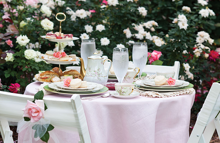 Tea in a Rose Garden