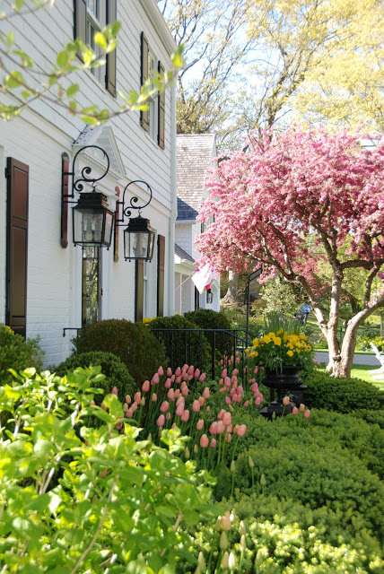 Pretty Pink Tulips House Outside 2