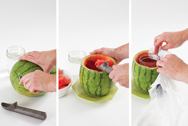 How-To Watermelon Vase Southern Lady