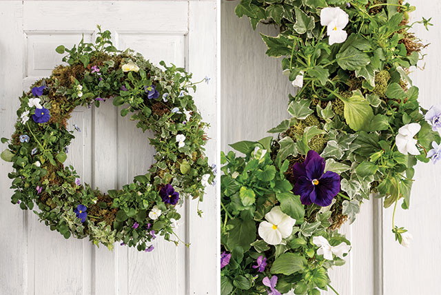 Pansy-Wreath