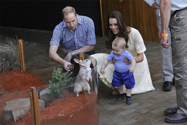 Kate-Middleton-Twitter-Photo